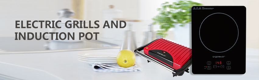 Grills, electric barbecues and Induction hobs